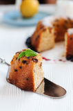 Piece of cake with raisins close-up. Cut off from the cake in the background. Selective focus Stock Photos