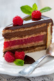 Piece of cake with raspberry jelly. Stock Photography