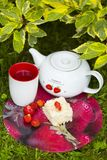 Piece of cake with strawberry on it, white teapot with picture of strawberry, cup of tea and several strwberries. On red tray on green grass Stock Photo