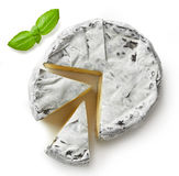 Piece of camembert cheese Stock Images