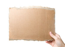 Piece of cardboard. In the hand isolated on white royalty free stock photos
