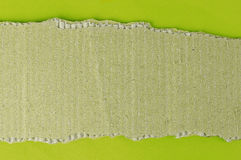 Piece of cardboard, green background for your own text Royalty Free Stock Photography
