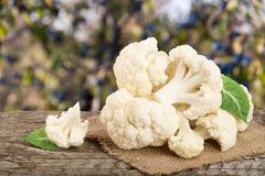 Piece of cauliflower on wooden table with blurred garden background.  Stock Images