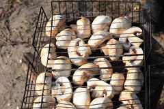 Piece of champignons on grill Royalty Free Stock Image