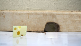 Piece of cheese in front of a mouse hole Stock Photo
