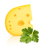 Piece of cheese with holes Stock Photos