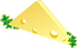 Piece of a cheese with parsley Stock Photo