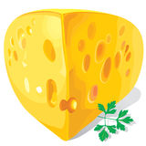Piece of cheese and parsley Stock Photos