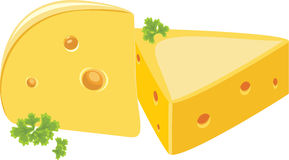 Piece of cheese with parsley Stock Image