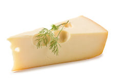 Piece of cheese with a sprig of dill Stock Photography