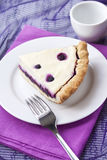 Piece of cheesecake with blueberries Royalty Free Stock Images