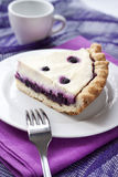 Piece of cheesecake with blueberries Stock Image
