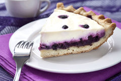 Piece of cheesecake with blueberries Stock Photography