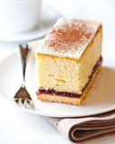 Piece of cheesecake with white chocolate Royalty Free Stock Photo