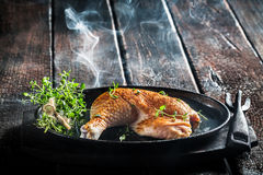Piece of chicken with fresh marjoram ready for grilling Stock Images