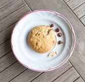A piece of choc chip cookie Stock Photos