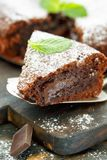 Piece of chocolate cake dusted with powdered sugar. Stock Photos