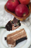 Piece of chocolate cake in focus on a spoon Royalty Free Stock Photography