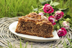 Piece of chocolate cake at garden party. Beautiful lush pink ros Stock Photography