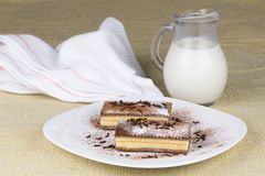 Piece of chocolate cake with milk. And a towel Stock Image