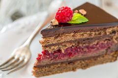 Piece of chocolate cake. Stock Photography