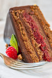 Piece of chocolate cake with raspberries. Stock Photo
