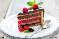 Piece of chocolate cake with raspberry jelly. Royalty Free Stock Photos