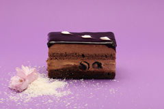 Piece of chocolate and cherry cake on magenta background Stock Image