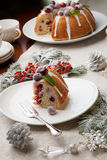 Piece of Christmas Cranberry Cake Stock Images