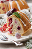 Piece of Christmas Cranberry Cake Royalty Free Stock Image