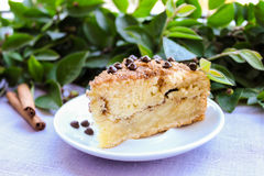 Piece of cinnamon and chocolate chips coffee cake Stock Photography