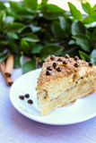 Piece of cinnamon and chocolate chips coffee cake Stock Photos