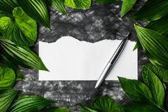 Piece of clean paper on a dark background surrounded by leaves, Royalty Free Stock Photography
