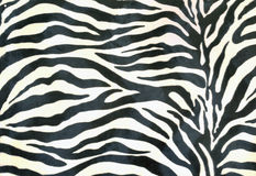 Piece of cloth painted zebra background Stock Images