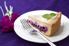 Piece of coffee cake with blueberries Royalty Free Stock Photo
