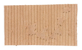 Piece of corrugated cardboard. Torn, isolated on white background. Cardboard texture ragged edge stock image