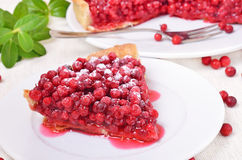 Piece of cowberry pie and  powdered sugar on white plate Royalty Free Stock Photos