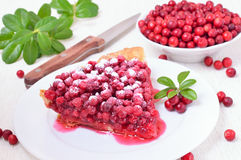 Piece of cowberry pie and  powdered sugar on white plate Royalty Free Stock Photography