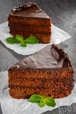 Piece of dark chocolate cake with frosting Stock Image