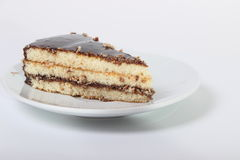 Piece of delicious cake drizzled with chocolate. On a white background Stock Images