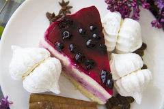 Piece of delicious cheesecake 18 Stock Images