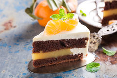 Piece of delicious chocolate cake royalty free stock photography