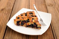 Piece of delicious homemade lattice pie with whole wild blueberries  Stock Photos