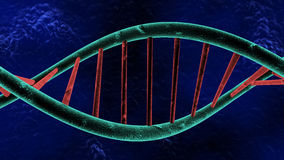 Piece of DNA Royalty Free Stock Photo