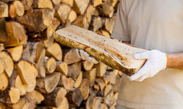 A piece of firewood in man hands Stock Photo