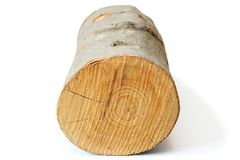 Piece of firewood on white Royalty Free Stock Image