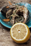 Piece of fragrant roasted fish Stock Images