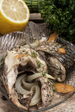 Piece of fragrant roasted fish Royalty Free Stock Image