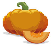Piece of a Fresh Pumpkin Sliced in Cartoon Style, Vector Illustration Stock Photo