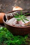 Piece of fresh raw fish Stock Photography